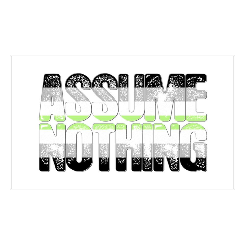Assume Nothing Agender Pride Rectangle Sticker