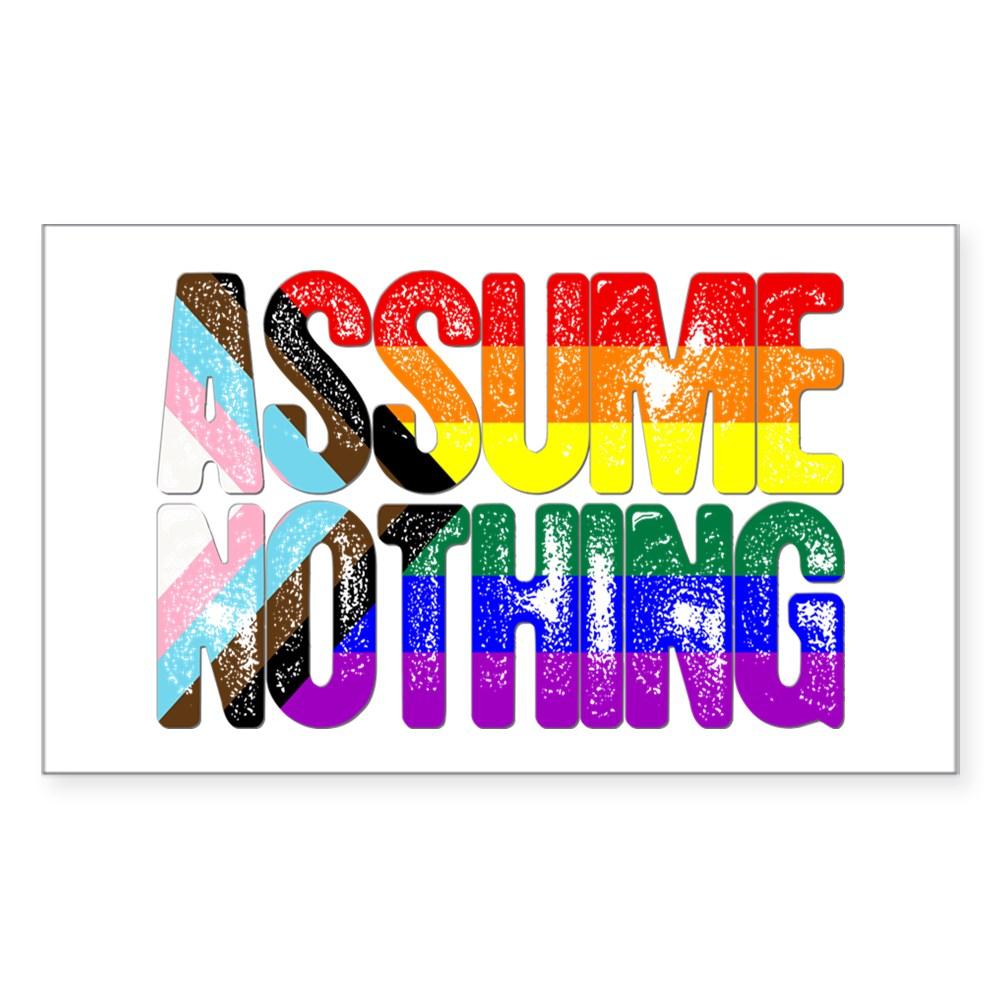 Assume Nothing LGBTQ Progress Pride Flag Rectangle Sticker