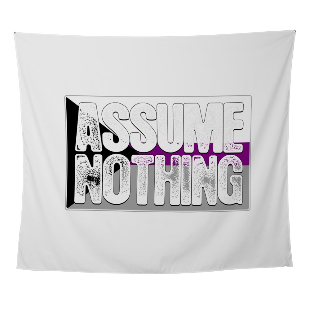 Assume Nothing Demisexual Pride Flag Wall Tapestry