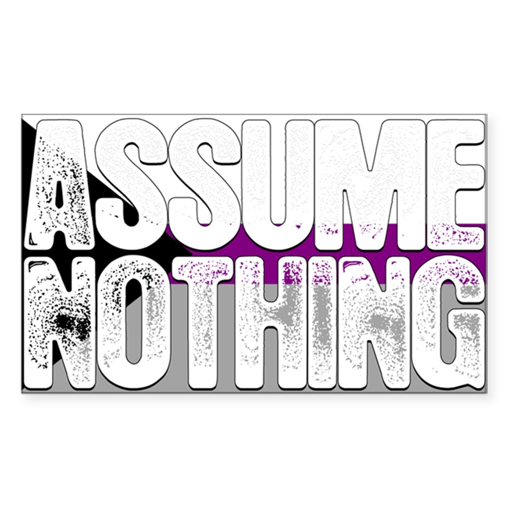 Assume Nothing Demisexual Pride Flag Rectangle Sticker