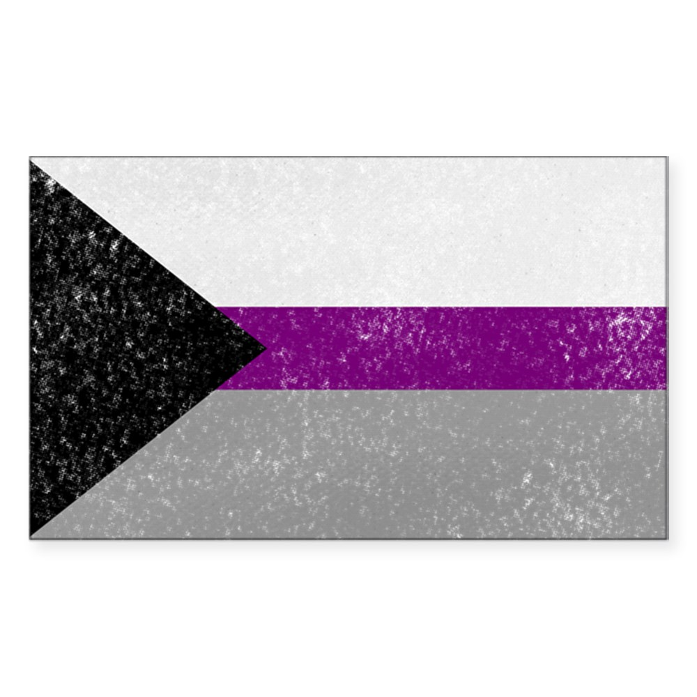 Distressed Demisexual Pride Flag Rectangle Sticker