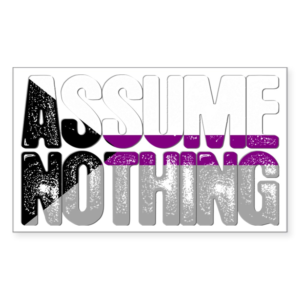 Assume Nothing Demisexual Pride Rectangle Sticker