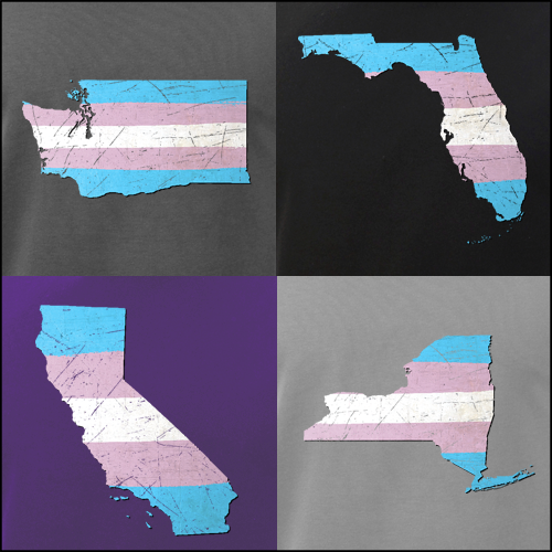 Transgender Pride State Silhouettes