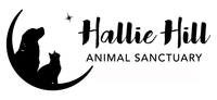 Hallie Hill Volunteers
