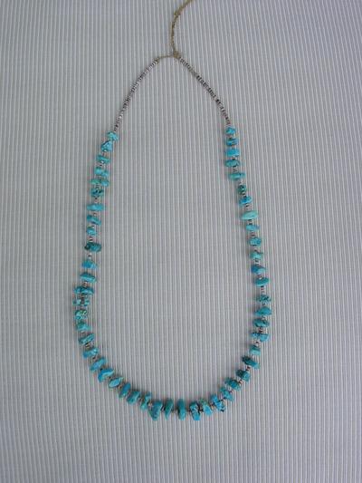 Turquoispuca1