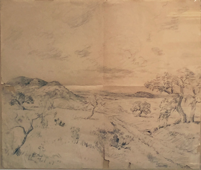 """Texas Landscape Study"""