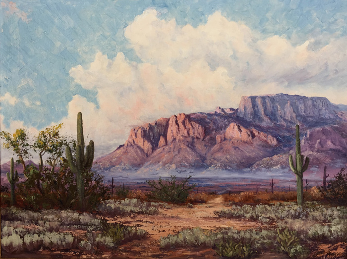 """Superstition Mountains"""