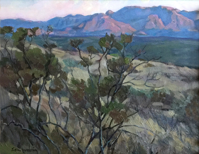 """Chisos Mountains"""
