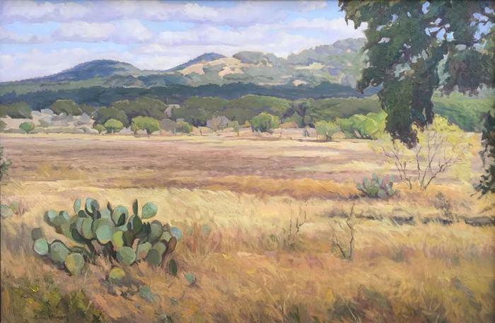 """Plowed Field, Utopia, Texas"""