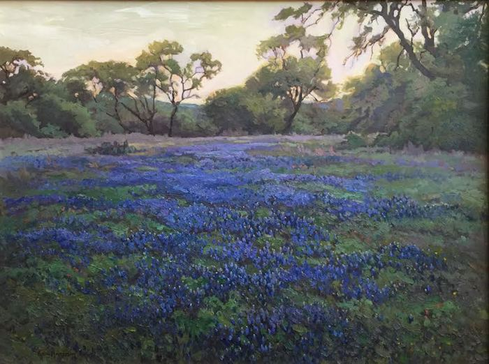 """Late Day Bluebonnets"""