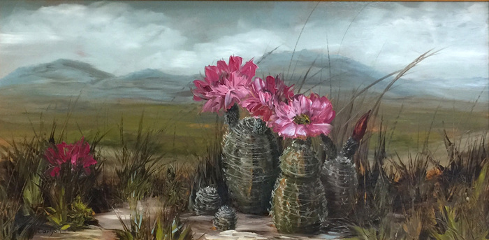 """Barrel Cactus in Bloom"""