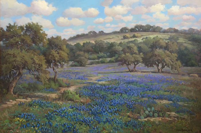 """Bluebonnets Blanco County"""