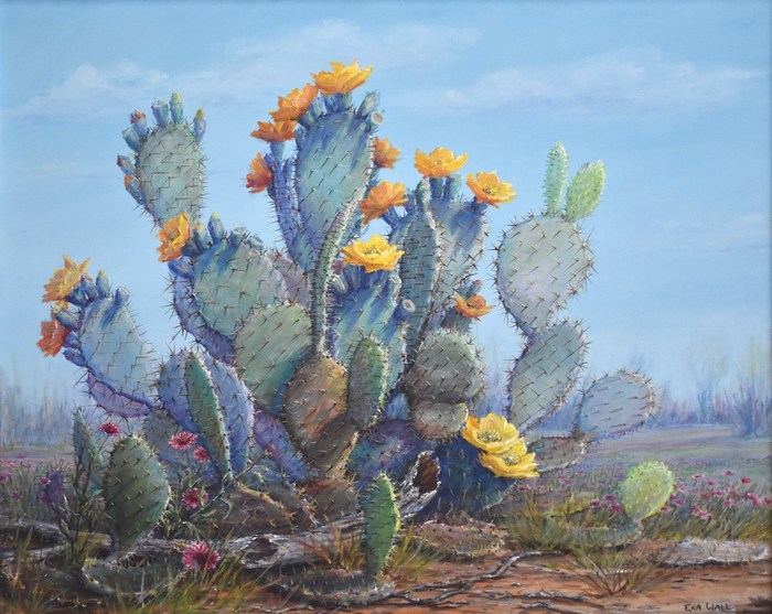 """The Sun Worshiper"" Blooming Prickly Pear Cactus"
