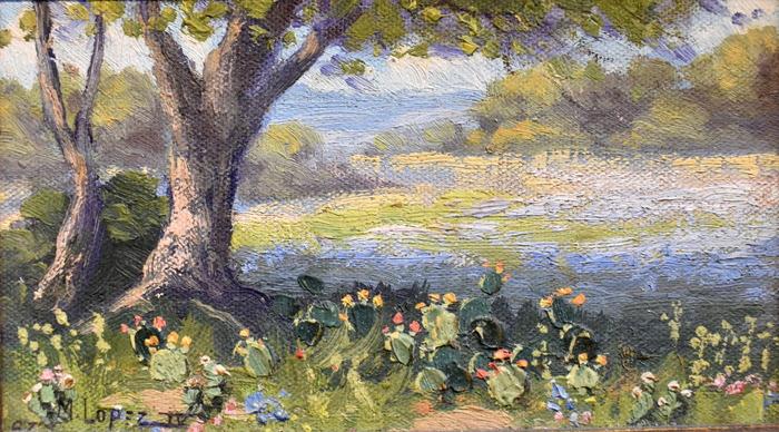 """""""Texas Landscape"""""""