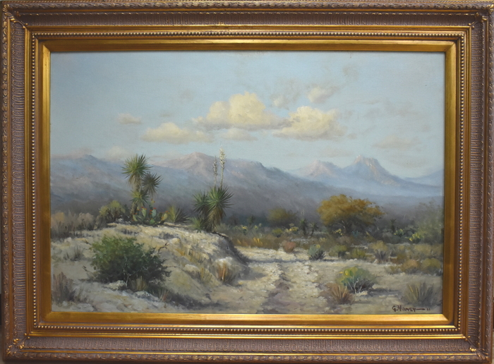 """West Texas Desert"""