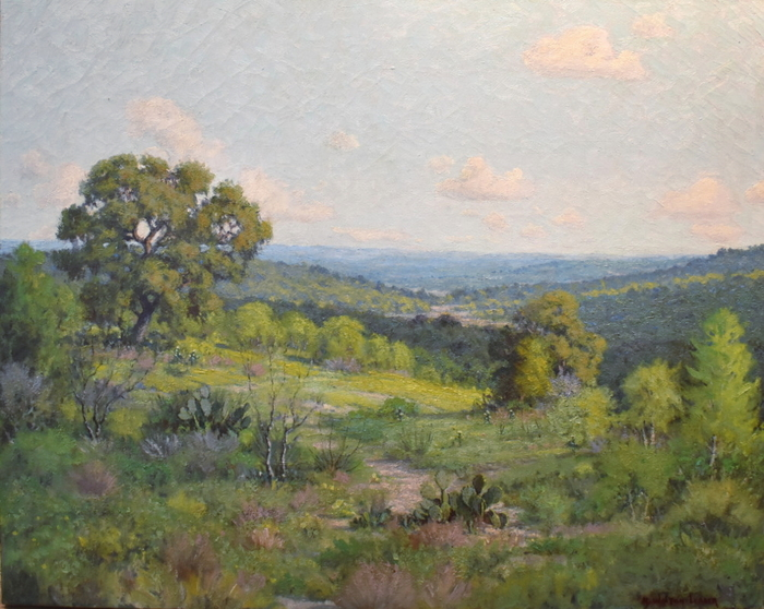 """""""Spring Time in Texas""""  West of Austin"""