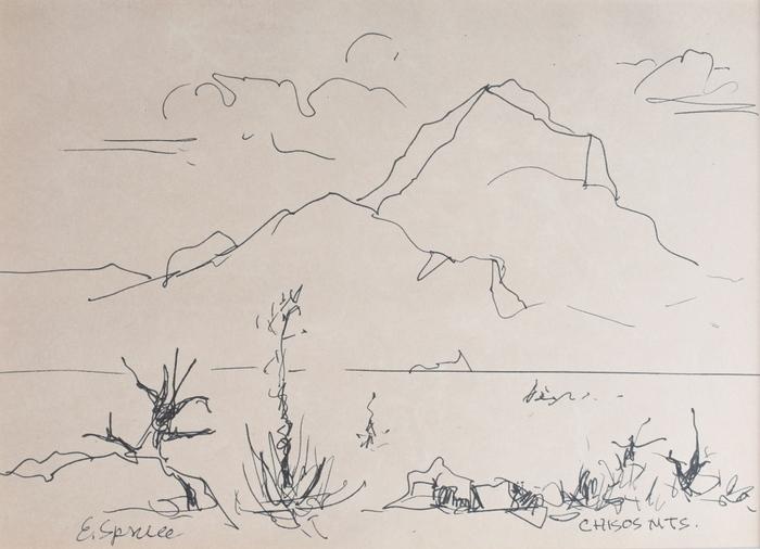 """""""Chisos Mountains"""""""