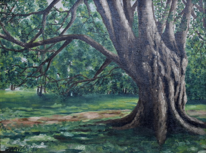 """Tree Trunk, 1936"""
