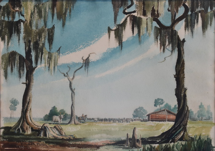 """Louisiana Cattle"""