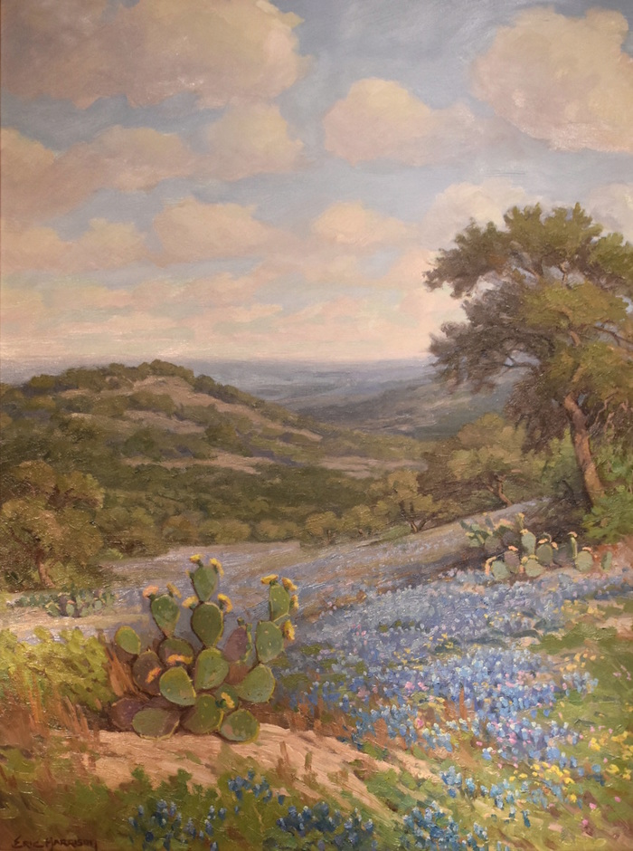 """Cactus And Bluebonnets"""