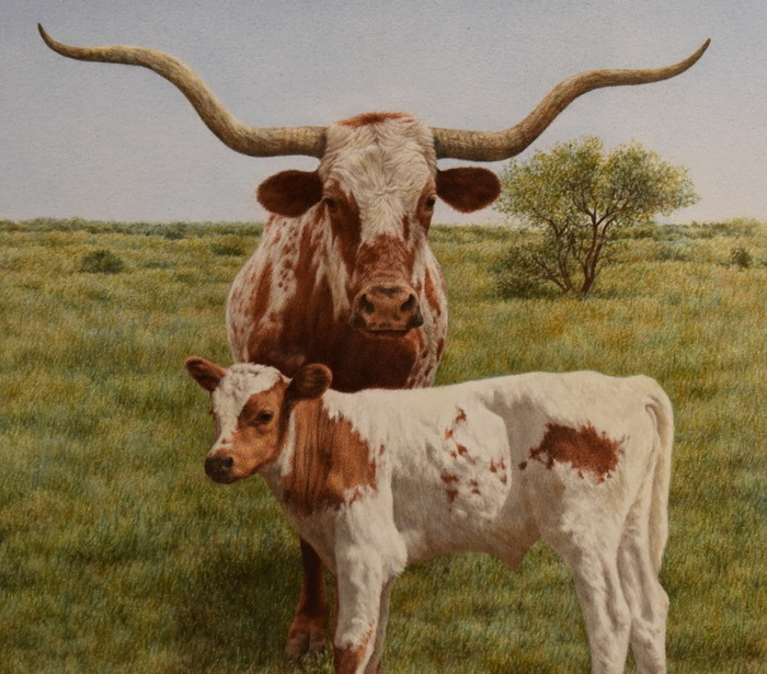 """New Generation"" Texas Longhorn"