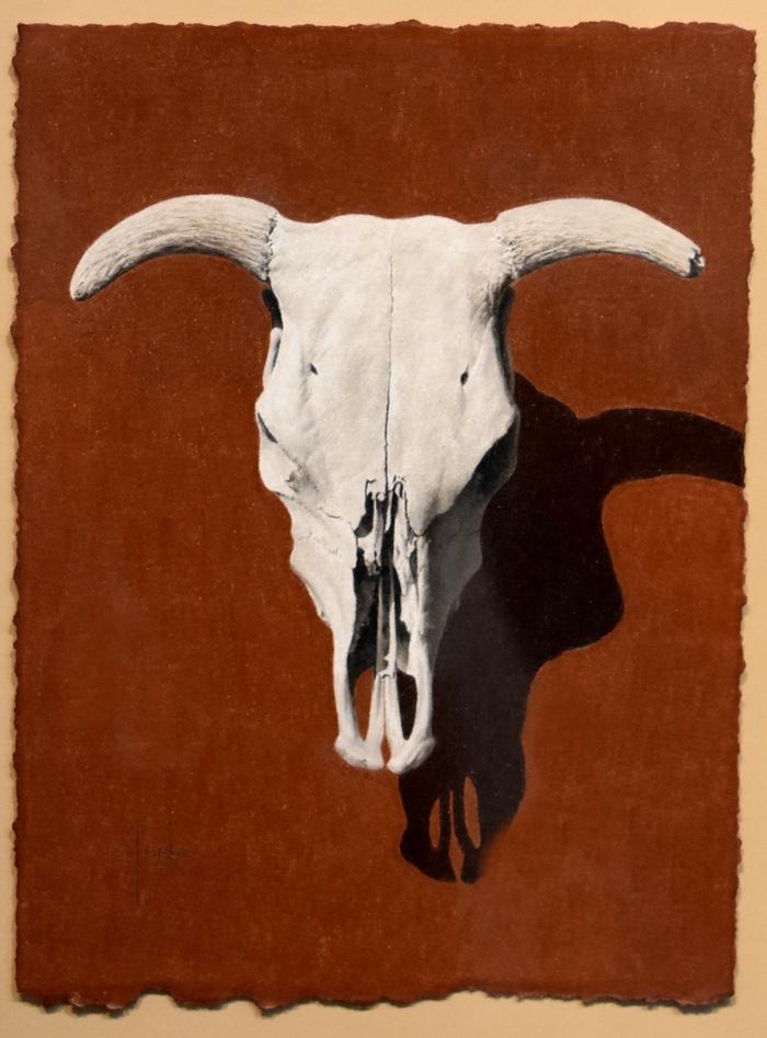 """""""Sunbaked Relic"""" Cow Skull"""