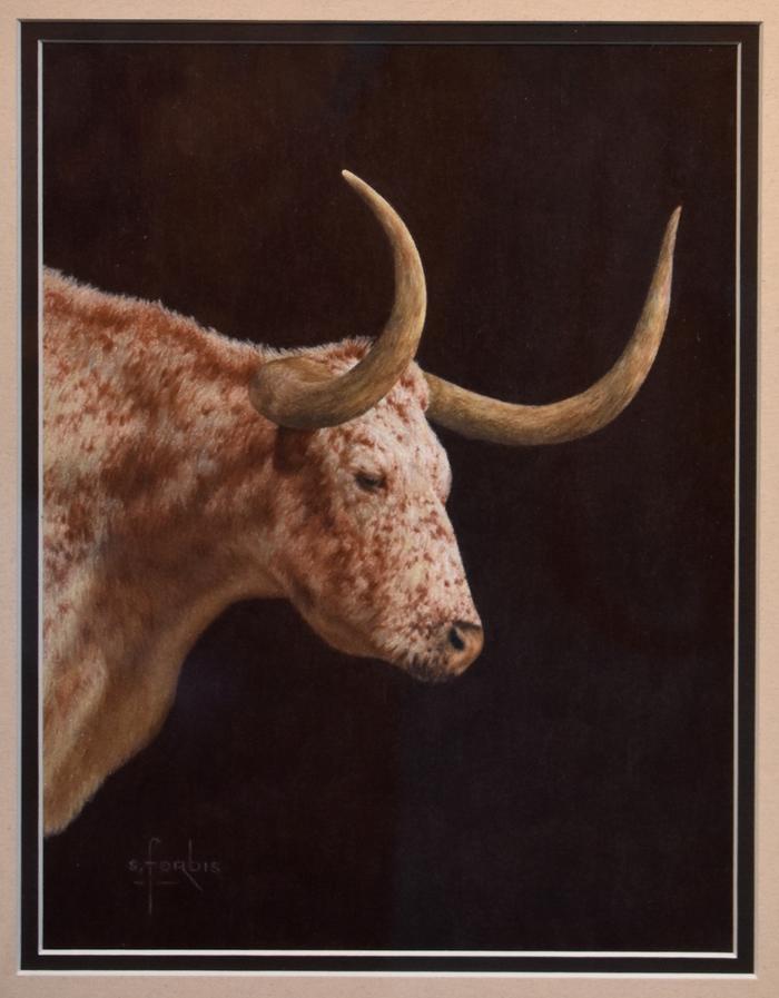 """""""Early Light""""  Texas Longhorn"""
