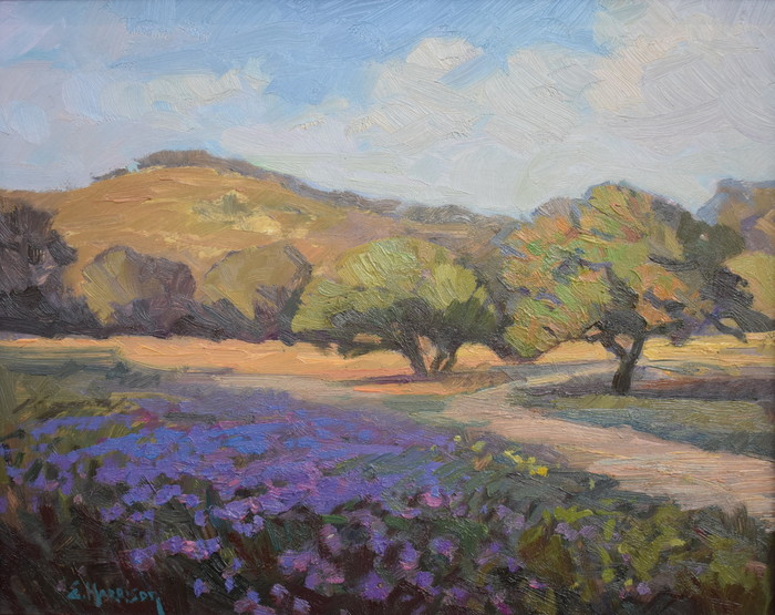 """Evening Light Blanco County"""