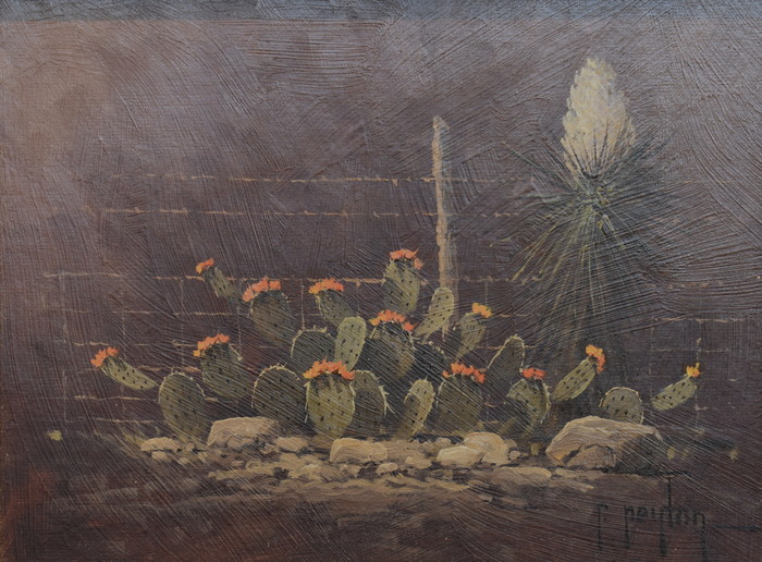 """""""Nocturnal Cactus"""""""