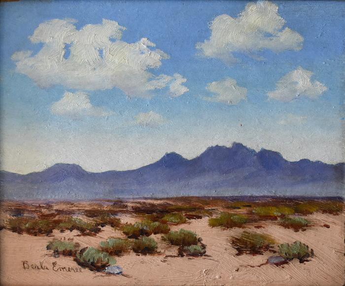 """""""Texas Desert"""""""