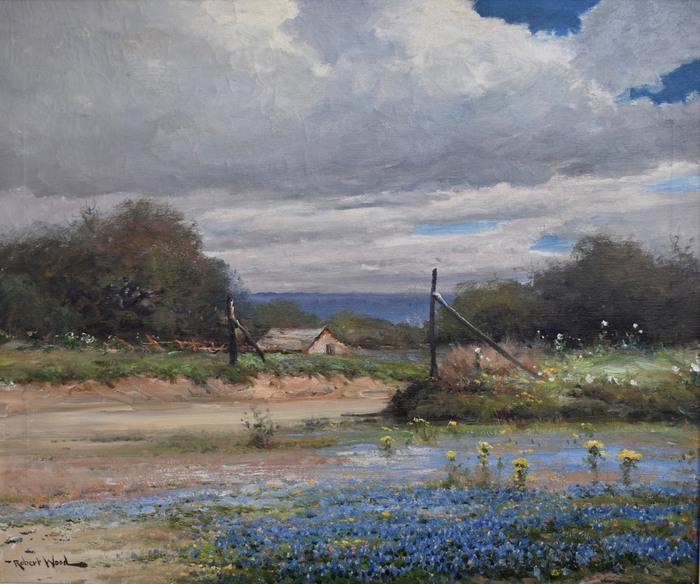 """Boerne Texas"" Bluebonnet Hill Country"