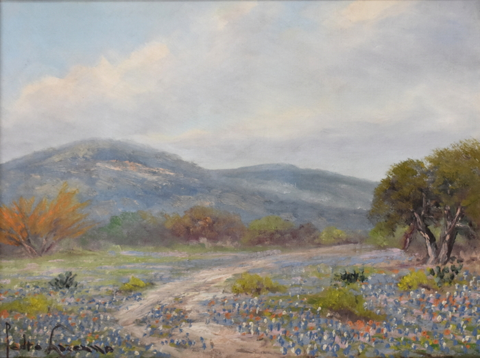 """Bluebonnets & Huisache"" Texas Hill Country"