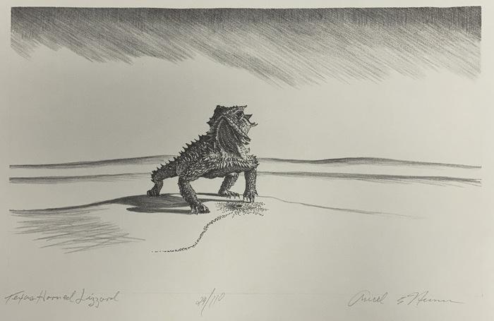 """""""Texas Horned Lizard"""""""