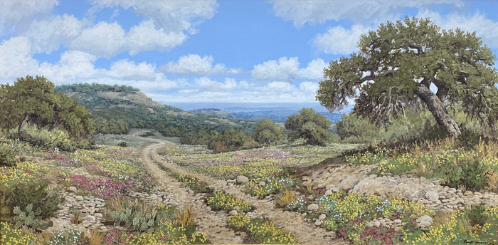 """""""The Rocky Trail"""" Texas Hill Country"""