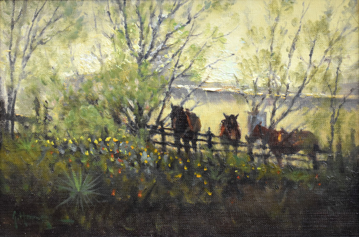 """""""Along the Back""""  Back of LBJ's ranch"""