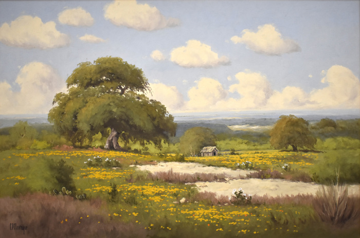 """""""Cabin in Coreopsis"""""""