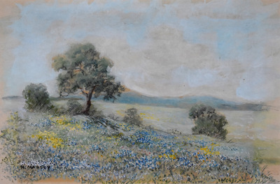 Bluebonnetlandscape