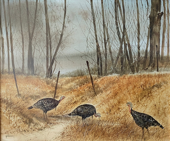 """Misty Morning Turkey Trot"""
