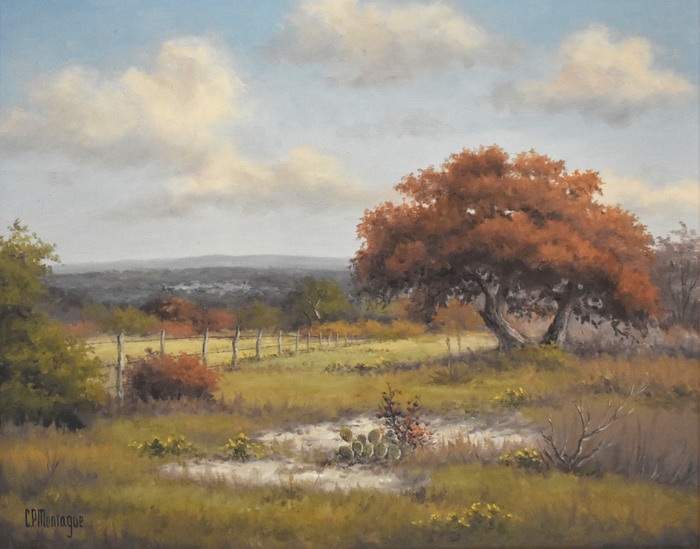 """""""The Fence Line"""" Texas Hill Country"""