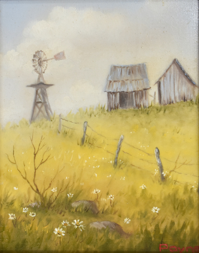 """""""Windmill in the Texas Hill Country"""""""