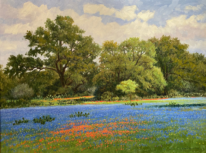 """""""A Touch of Indian Paint"""" Bluebonnets and Paintbrush"""
