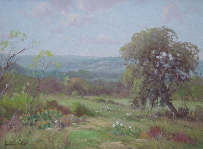 Texas Landscape W/Cactus