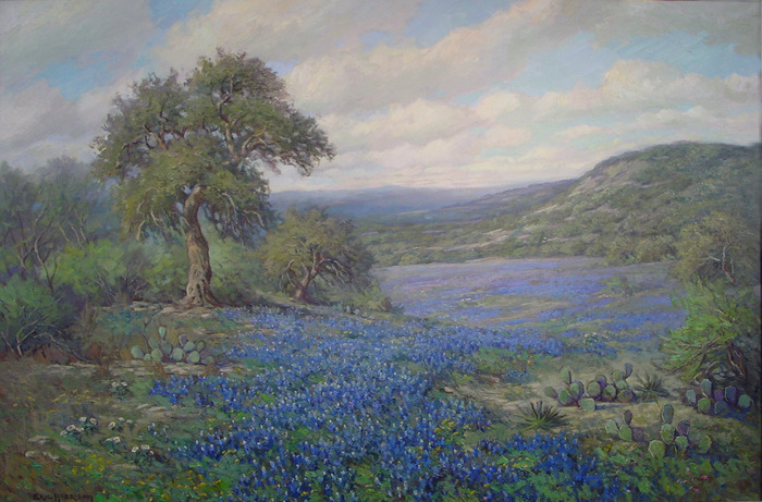 Bluebonnet Vista