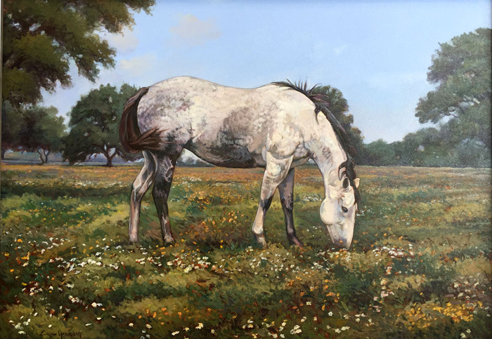 """Dapple Grey Horse"""