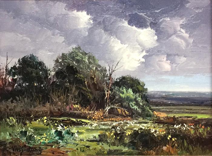 ''Landscape'' Texas