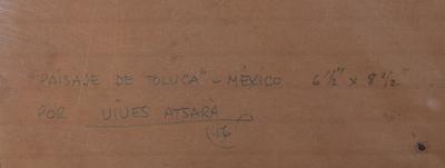 Toluca1