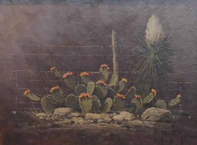 Nocturnalcactus4