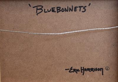 Bluebonnets3