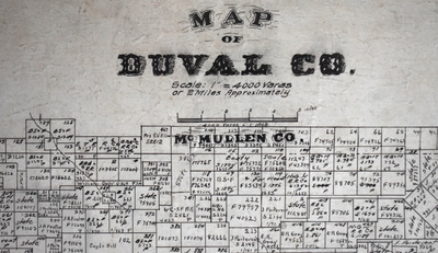 Duval_county_detail_sm