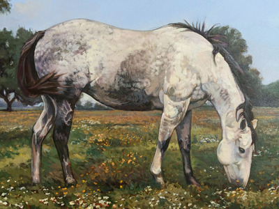 Roan_horse_34_x_48_b